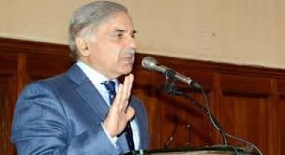 وزیراعلیٰ پنجاب نے سانحہ احمد پور شرقیہ کی تحقیقات کے لئے 4رکنی کمیٹی تشکیل دے دی