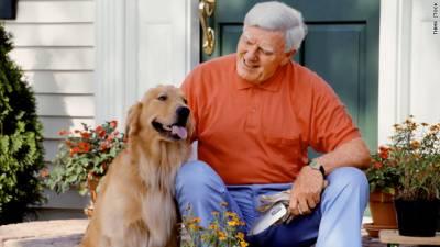 معمر افراد کے لیے کتے بہترین معاون ثابت ہوتےہیں ،ماہرین