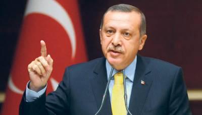ترک شہریوں سے خطاب کی اجازت نہ دے کر برلن حکومت 'خود کشی' کر رہی ہے، طیب اردگان