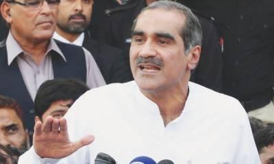مخصوص ذہنیت کے لوگ پاکستان میں جمہوریت کے خلاف ہیں ، سعد رفیق