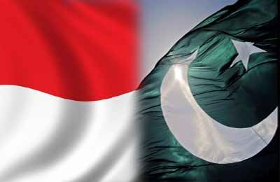 پاکستان اور انڈونیشیا کے درمیان دوطرفہ مشاورتی فورم کا پہلا اجلاس