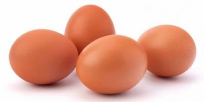 متحدہ عرب امارات نے انڈے اور گوشت سے بنی اشیا کی درآمدات پر پابندی لگا دی