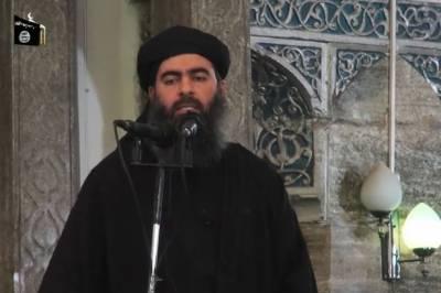 البغدادی کے زندہ ہونے کا 99فیصد یقین ہے،لاہور طالبانی