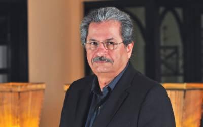 حکمران خاندان کا اصل کاروبار کرپشن ہے: شفقت محمود
