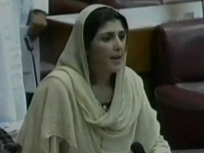 میں نے کمزور خواتین کو پیغام دیا ہے کہ وہ خاموش نہ رہیں ، عائشہ گلالئی