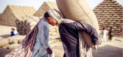محکمہ خوراک بلوچستان میں خردبرد کے ملزم کی درخواست ضمانت خارج کردی
