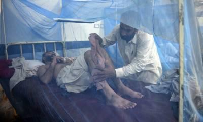 پشاور میں ڈینگی کے لمبے ڈیرے، 24نئے مریض داخل ،تعداد700سے تجاوز کرگئی