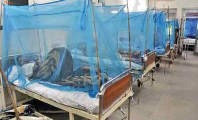 پشاور میں ڈینگی کا وار،مریضوں کی تعداد 900ہو گئی