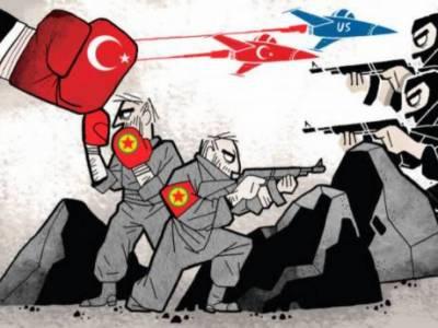 ترکی نے داعش کو یورپ اور نیٹو کی سرحدوں سے نکال دیا ہے، عمر چیلک