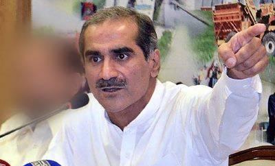 پشاور میں کچھ ہوجائے، خان صاحب وہاں جانا پسند نہیں کرتے: سعد رفیق