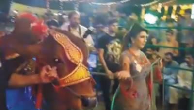 قربانی کے جانوروں کے ساتھ لڑکیوں کے ڈانس کی ویڈیو ٗ فحاشی اپنی انتہا پر پہنچ گئی