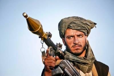 افغان حکام کی طالبان سے تقریبا ہر روز بات چیت ہوتی ہے،امریکی میڈیا