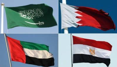 قطرہمیں سعودی عرب سے لڑانا چاہتا ہے،عرب امارات