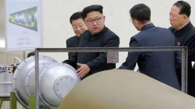 امریکا کو ایسا درد دیا جائے گا جو پہلے کبھی نہ سہا ہو گا، شمالی کوریا