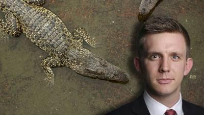 مگر مچھ کا حملہ، معروف برطانوی صحافی جان سے ہاتھ دھو بیٹھا