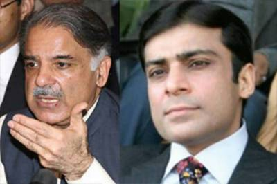 ہمارے وزیراعظم شہباز شریف اور وزیر اعلیٰ پنجاب حمزہ شہباز، پمفلٹ تقسیم