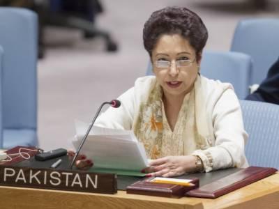 پاکستان سرحد پارسے دہشت گردی کرنے والی قوتوں کو بھی شکست دے گا، ملیحہ لودھی