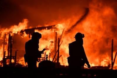 امریکی ریاست کیلیفو رنیا کے جنگلات میں آگ،دس افراد ہلاک