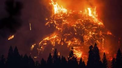 کیلیفورنیا کے جنگلات میں آتشزدگی سے 31 افراد ہلاک