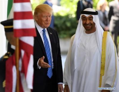 متحدہ عرب امارات نے ایران کے خلاف امریکی اقدمات کی حمایت کر دی