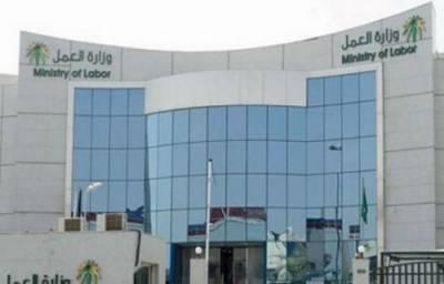 سعودی عرب کے ویزوں کی اجراء میں 62فیصد کمی واقع ہو ئی ، وزارت محنت