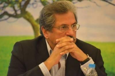 شریف برادران میں نوراکشتی چل رہی ہے ، شفقت محمود