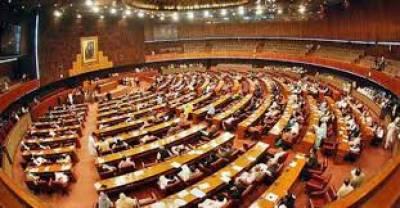 پارلیمنٹ کی رکنیت سے نااہل شخص سیاسی جماعت کا سربراہ نہیں بن سکتا