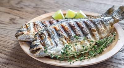 مچھلی الزائمر سے بچاو میں مفید