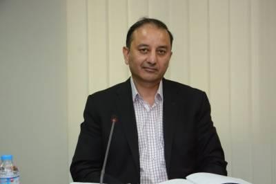 مسلم لیگ (ن) کی حکومت اپنی آئینی مدت پوری کرے گی، مصدق ملک