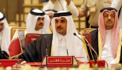 سعودی عرب اور اس کے اتحادی میرا تختہ الٹنا چاہتے ہیں، امیر قطر کا الزام