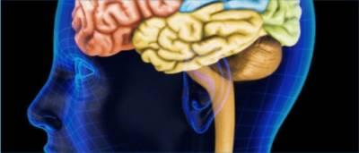 خالص ریشم سے حرام مغز کی بیماریوں کا علاج ممکن ہے