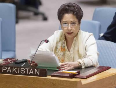 پاکستان نے سلامتی کونسل میں مستقل نشستوں میں اضافے کی تجویز کو مسترد کر دیا