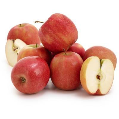ماہرین نے موٹے افراد کو سیب کھا نے کا مشورہ دیدیا