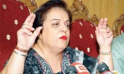 تحریک انصاف نے عوام میں سیاسی شعور پیدا کیا : شیریں مزاری