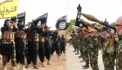داعش کا عراق اور شام میں خلافت کا خواب ٹوٹ پھوٹ کا شکار ہے : امریکی میڈیا