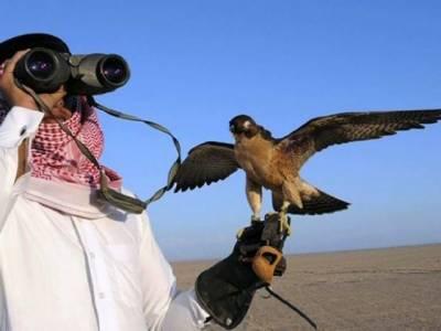 تھر میں غیر قانونی شکار، قطری خاندان کے خلاف مقدمہ درج