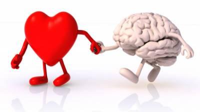 دماغی صحت کو بہتر بنانے والی مفید غذائیں