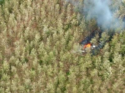 کوسٹا ریکا میں چھوٹا طیارہ گرکر تباہ ،12 افراد ہلاک ،حکام