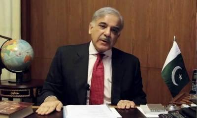 شہریوں کو موسمی انفلوئنزا سے بچانا اداروں کی ذمہ داری ہے : شہباز شریف