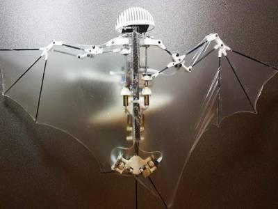 پینٹا گون کا 'چمگادڑ ڈرون' بنانے کا منصوبہ سامنے آگیا