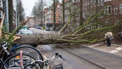 شمالی یورپ میں شدید طوفان، آٹھ افراد ہلاک