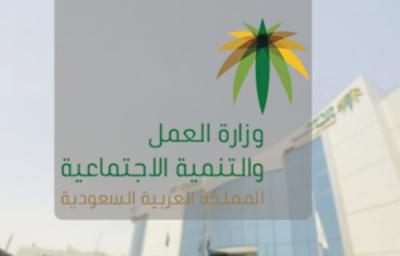 گھریلو ملازمین کو مملکت پہنچتے ہی تنخواہ کیلئے بینک کارڈ دیدیئے جائیں، وزارت محنت