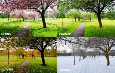 آئندہ 24 گھنٹے میں ملک کے بیشتر علاقوں میں موسم سرد اور خشک رہنے کا امکان ظاہر کیا ہے