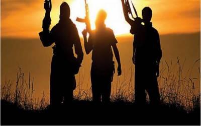 کرد باغیوں کے حملے سے 11 ترک فوج ہلاک