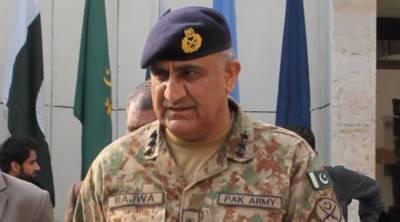 پاکستان کی سرزمین سے دہشتگردی کا خاتمہ کر دیا:آرمی چیف