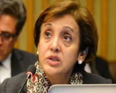 پاکستان-امریکا دہشت گردی اور القاعدہ کیخلاف جنگ میں اہم پارٹنر ہیں، تہمینہ جنجوعہ