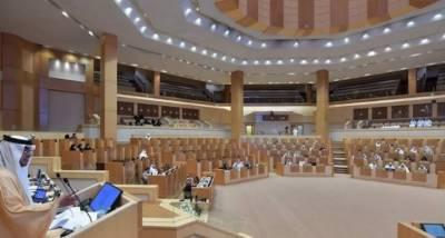 متحدہ عرب امارات نے غیر معیاری اشیاءفروخت کرنیوالوں کیخلاف نیا قانون لاگو کردیا