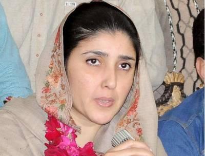 پی ٹی آئی میں بھی (ن ) لیگ اور پی پی کی طرح موروثی سیاست موجود ہے: عائشہ گلالئی
