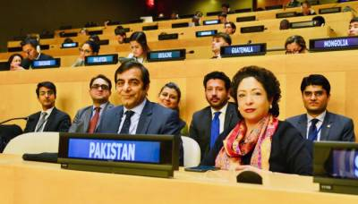 پاکستان اقوام متحدہ کی غیر سرکاری تنظیموں کی کمیٹی کا رکن منتخب