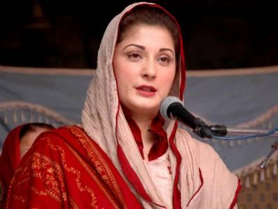 پاکستان مسلم لیگ ن نے اپنا آفیشل چینل متعارف کروادیا